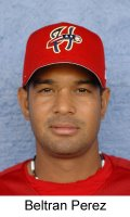 Washington Nationals pitcher Beltran Perez looks like he might be worth taking a flyer on.