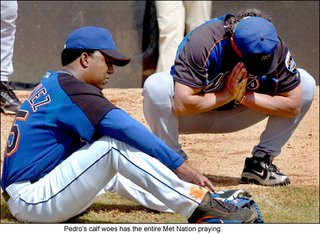 Pedro Martinez's injury may throw a kink in the Mets' plans.